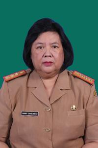 Dra. HANNY DAHLIANI DAHULI MM.