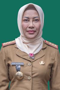 Dr. Erlina Dalisaputra, S.Pt. MT