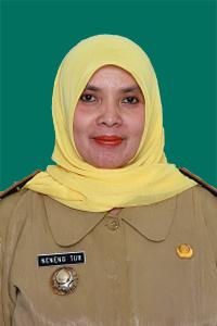 Dra. Neneng Turfatmah, M.Si