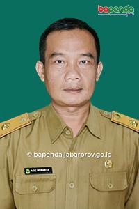 Ade Wikarta, S.IP